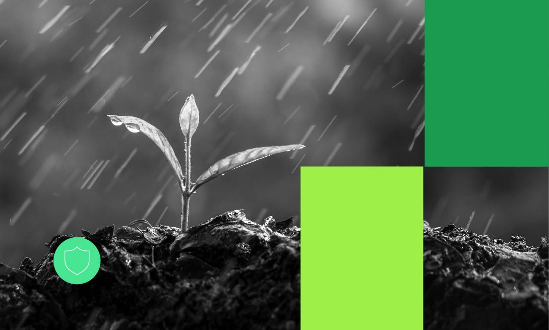 Novos Cursos_Manejo do sistema solo-água na agricultura