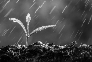 Novos Cursos_Manejo do sistema solo-água na agricultura-1
